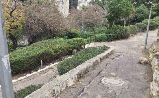 גן התאנים (צילום: מועצת הדר הכרמל) גן התאנים (צילום: מועצת הדר הכרמל)