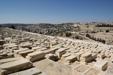 בלי בושה: 'סיירת הגנבים' של בית הקברות