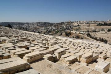 הצעת החוק לפתיחת קבר תגובה בפסק הלכתי של הרבנות הראשית