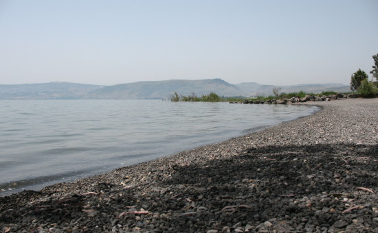 כנרת (צילום: ויקיפדיה)