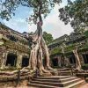 חוצה יבשות: המבוקש בקמבודיה גירש את אשתו