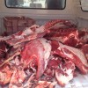 נתפס והושמד: רבע טון בשר שלא ראוי למאכל