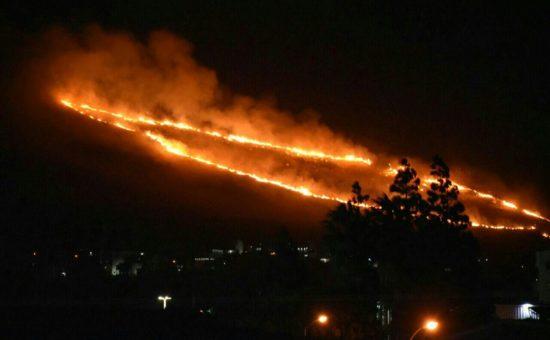 שריפה בהר חלוץ