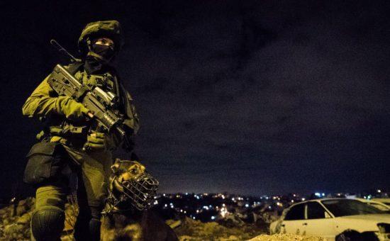 """חייל בפעיות לילית (צילום: דובר צה""""ל)"""