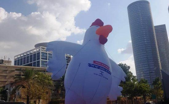 תרנגול המחאה