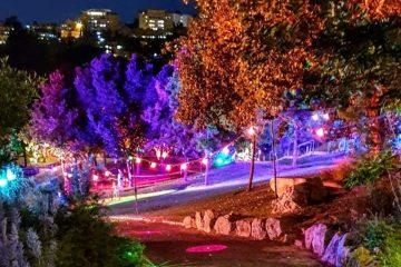 האירוע המרכזי של הקיץ בגן הבוטני בירושלים