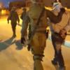 """גל מעצרים ביו""""ש: 20 מבוקשים נעצרו הלילה ע""""י כוחות הביטחון"""