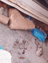 תל אביב: נתפס מטען חבלה שלא הופעל