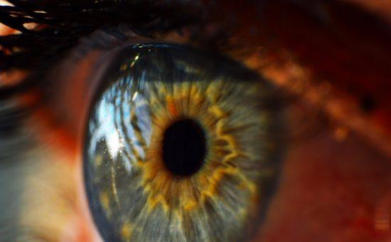 עין אנושית, צילום:PIXABAY