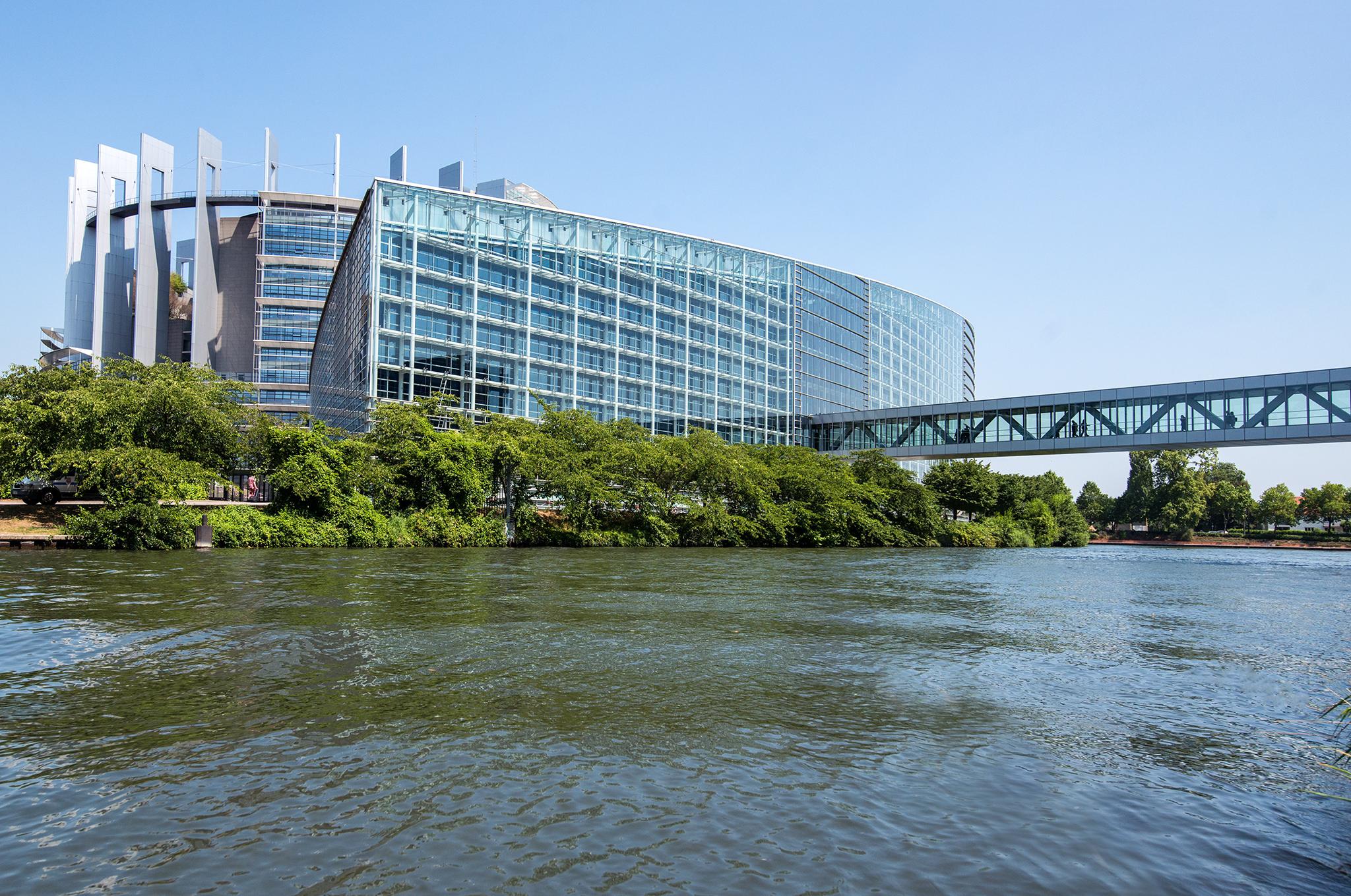 הפרלמנט האירופי: להשיב מידיית את הרכוש שנגנב מידיי הניצולים