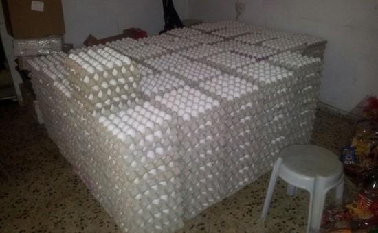 סכנה, סלמנולה! • בעקובת תחלואה בבני אדם בדק משרד החקלאות ומצא: סלמנולה בביצים