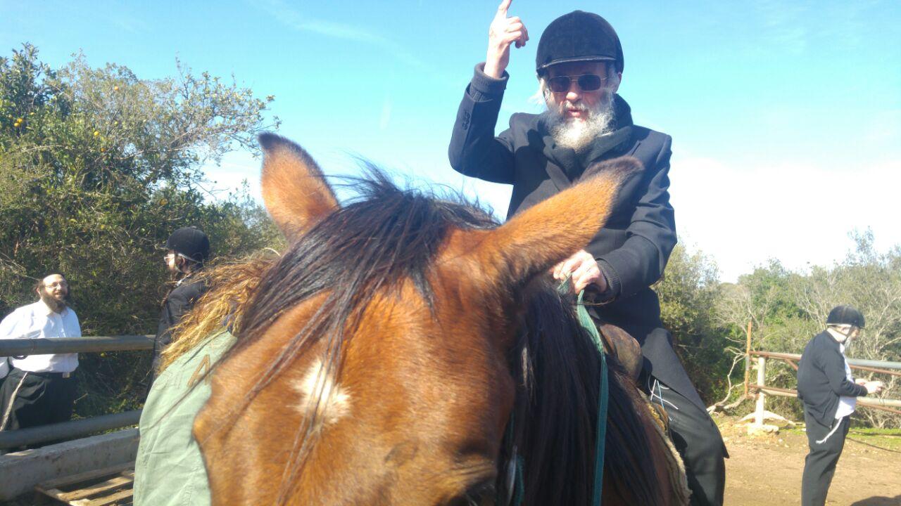 צוחק למוות בפרצוף: ר' קלמן גולדשמיד דוהר על הסוס