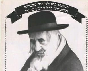 יהודי ניו יורק מצאו 'סגולה' נגד דוחות השוטרים/עכברים