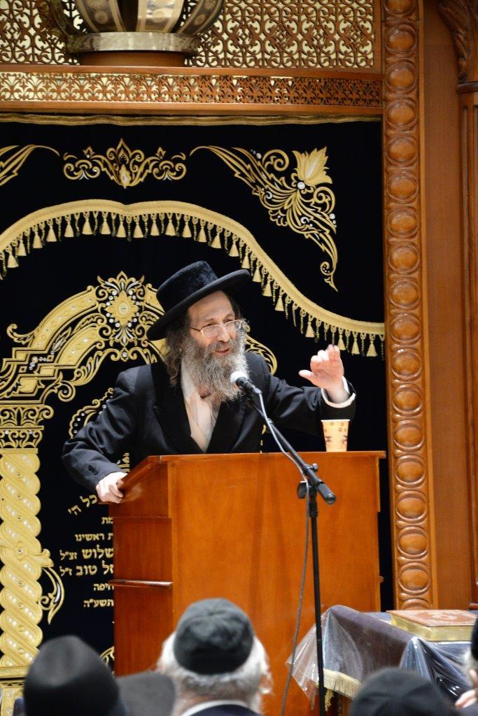 צפו: רבי אלימלך בידרמן העיר את חיפה