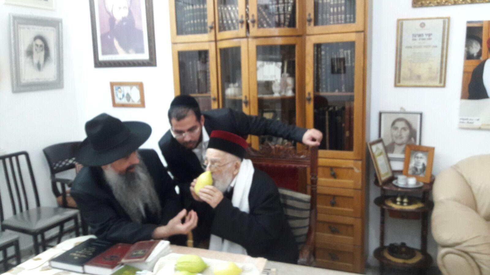 זקני רבני מרוקו, הרב יהושע מאמאן בבחירת אתרוג לחג הסוכות