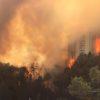 גם השריפות בבית מאיר ובהר חלוץ – הצתות לאומניות